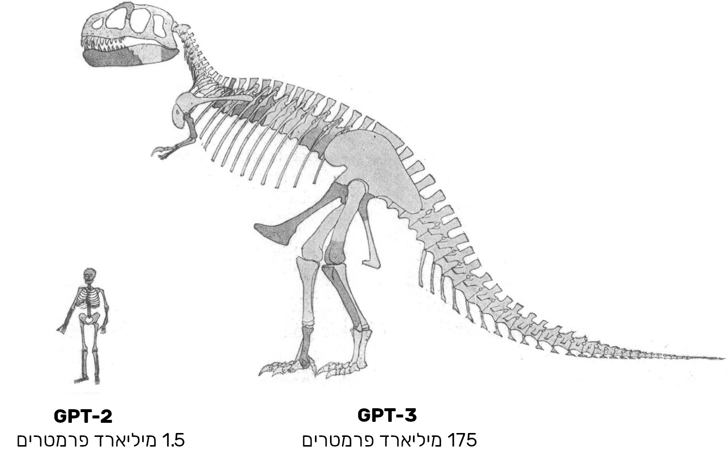 Approximate-size-comparison-of-GPT-2