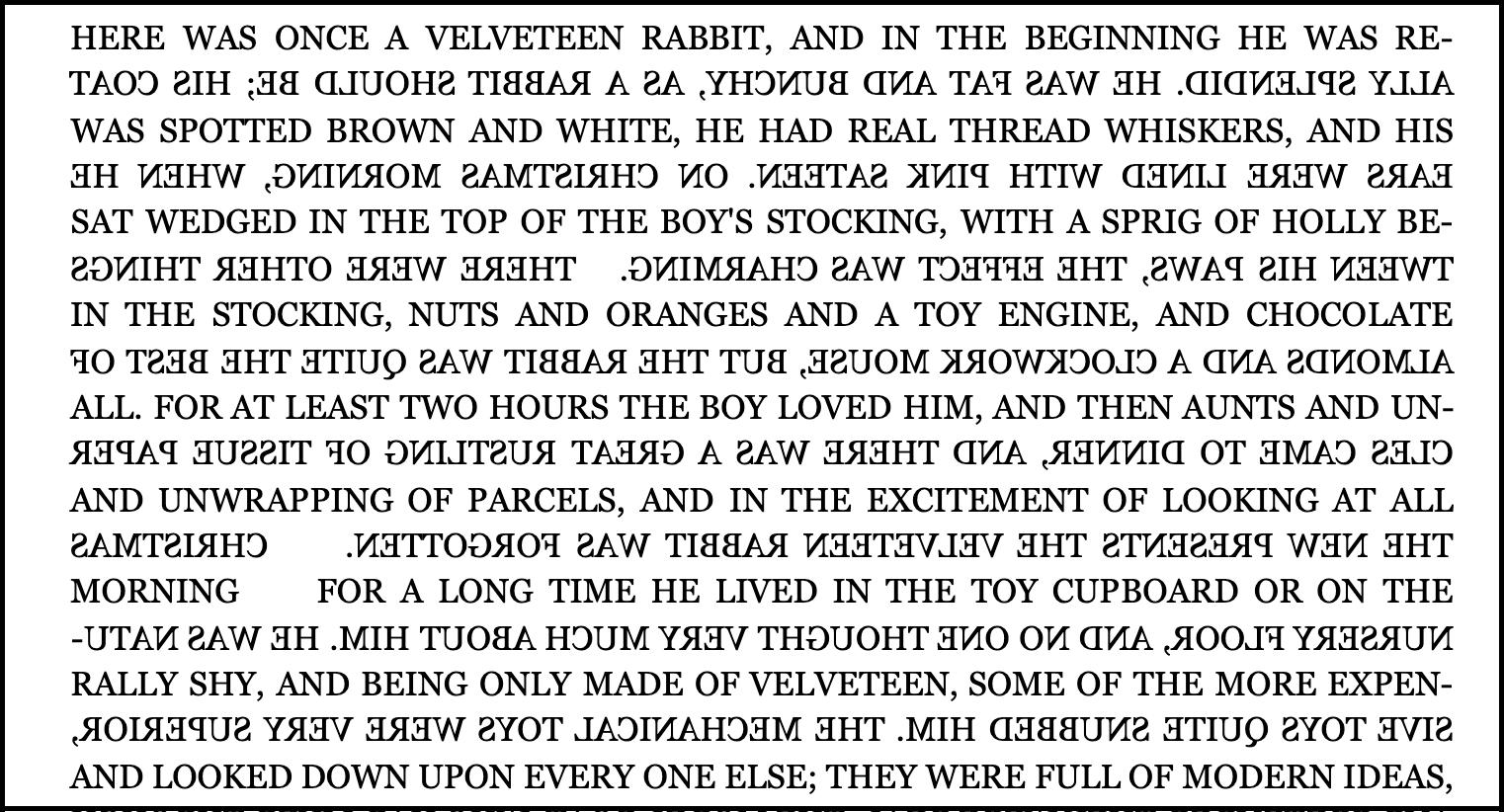 ארנב הקטיפה בוסטרופדון עמוד ראשון